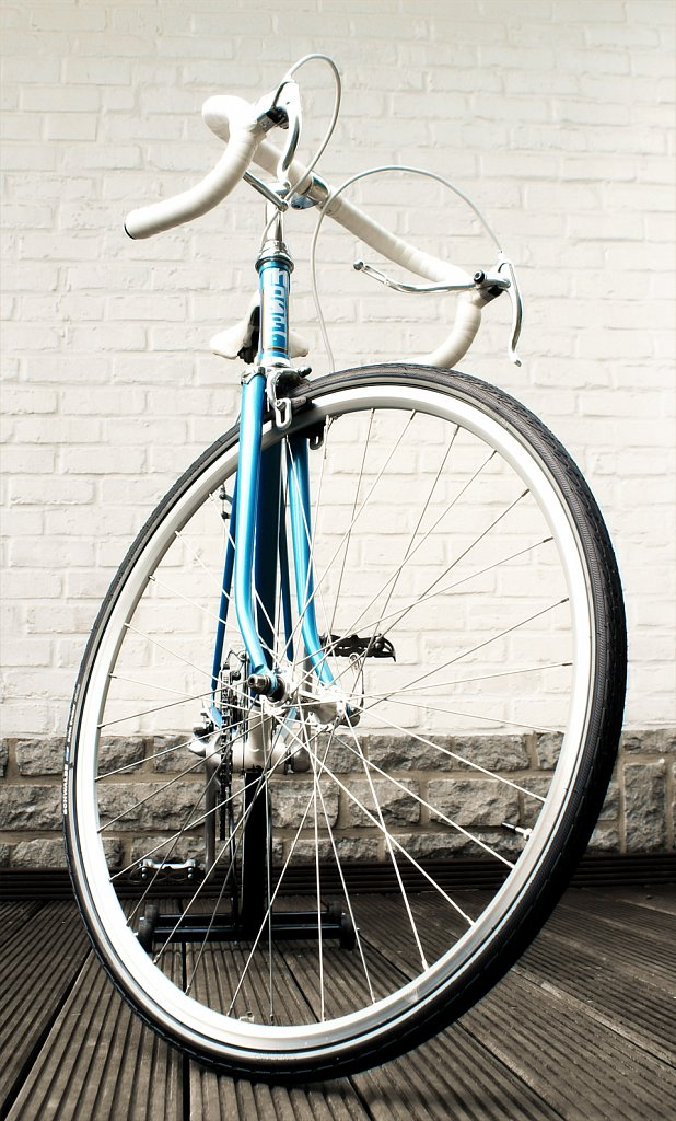 Moser-Front-roue.jpg